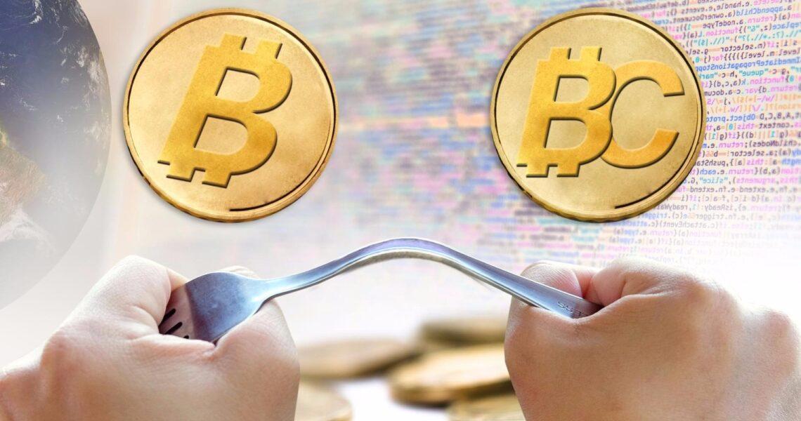 Bitcoin Cash (BCH) and Bitcoin Gold (BTG)